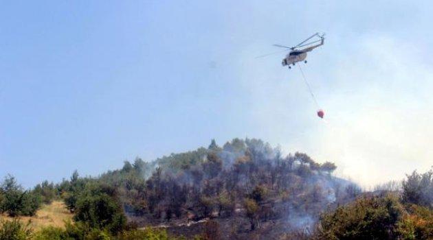 1.5 hektar ormanlık alan küle döndü