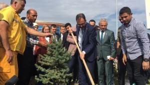 Bakan Kasapoğlu Turgutlulu Şehit Tolga Artuğ anısına çam ağacı dikti