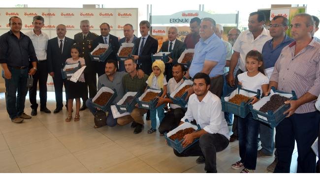 Turgutlu'da 2'nci 'En Güzel Kuru Üzüm Yarışması