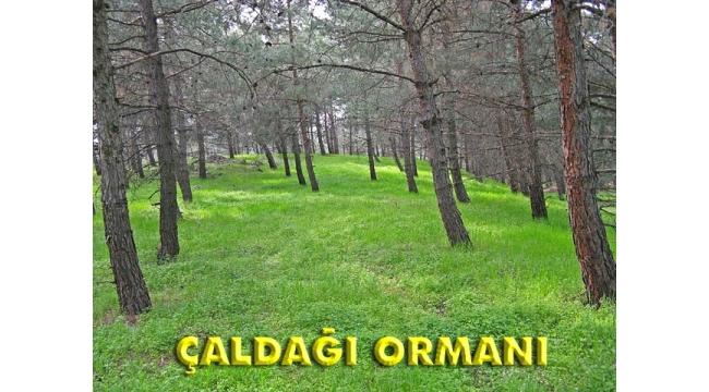 TURÇEP'TEN BİLGİLENDİRME TOPLANTISI