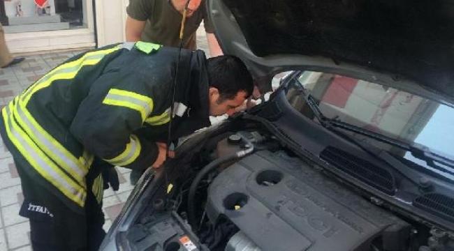 Otomobilin altına giren kediyi itfaiye çıkardı