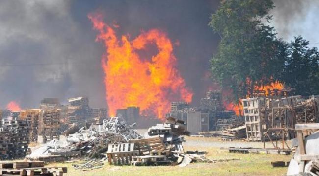 Otluk alanda başlayan yangın palet fabrikasının deposuna sıçradı