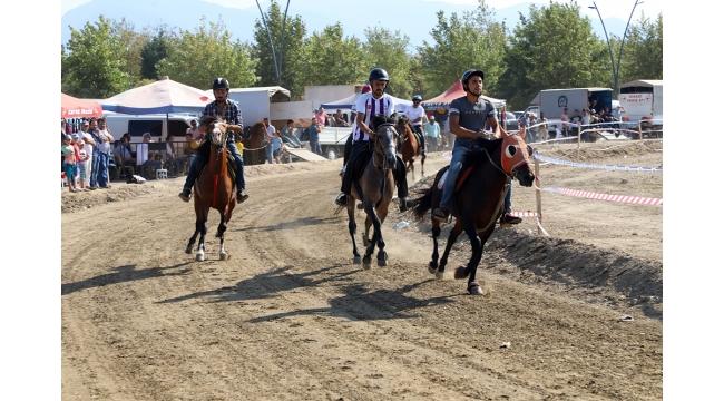 Rahvan at yarışları heyecanı Turgutlu'da yaşandı