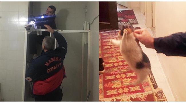 Havalandırma boşluğuna düşen kedi kurtarıldı