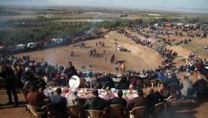 Musalar Yeniköy'de 6.Geleneksel Deve Güreşlerine yoğun ilgi (VİDEO)