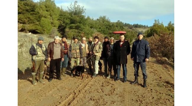 Ahmetli'de yaban domuzları ile mücadele