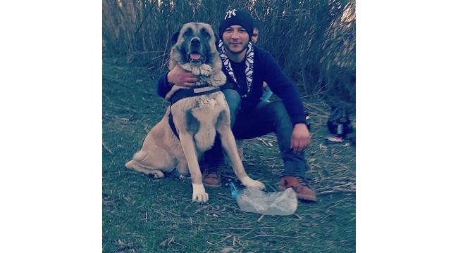 Turgutlu'da kayıp köpek aranıyor