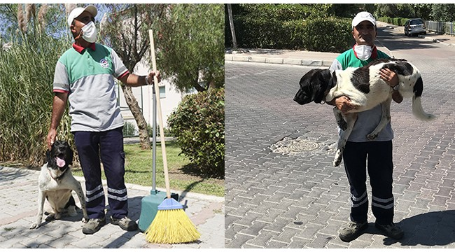 Üç bacaklı sokak köpeği, temizlik işçisini 5 yıldır yalnız bırakmıyor
