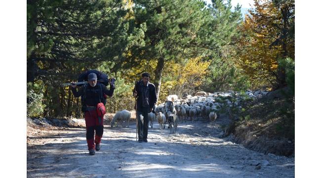 Yörükler'in göç rotalarını kayıt altına almak isteyen profesyonel dağcı 1000 kilometre yürüdü