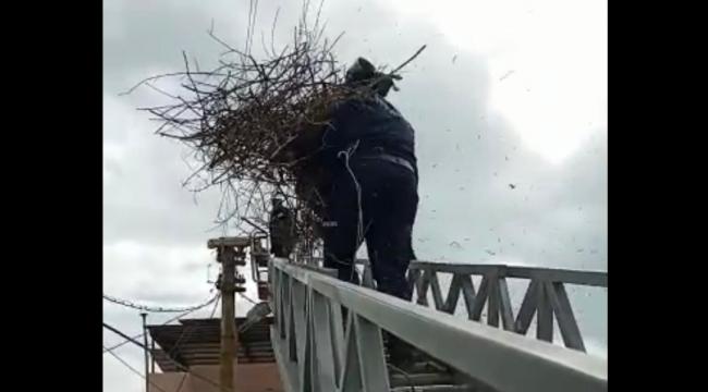 Fırtınanın uçurduğu leyleklerin yuvası itfaiye yardımıyla yerine kondu