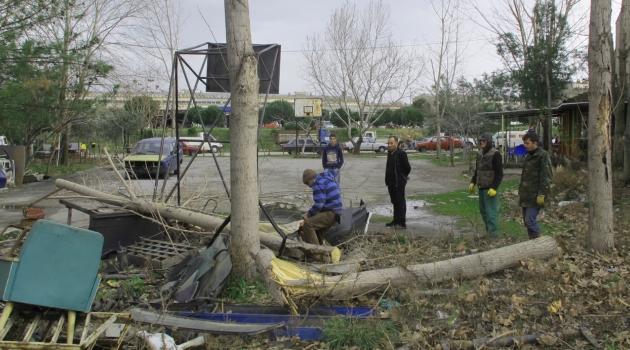 Rüzgardan ağaçlar devrildi