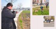 Sokak hayvanları bakım için toplandı
