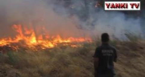 Kabaçınar orman yangını